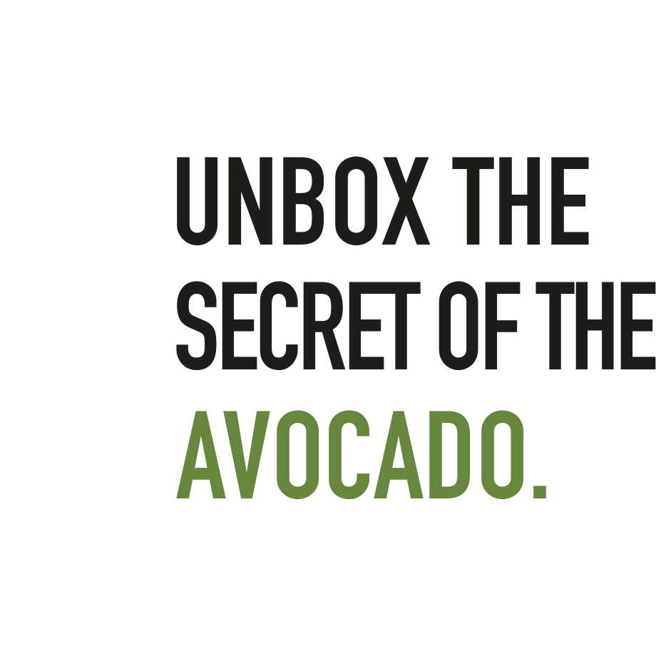 naturebox_us_avocado_overlay_920x920